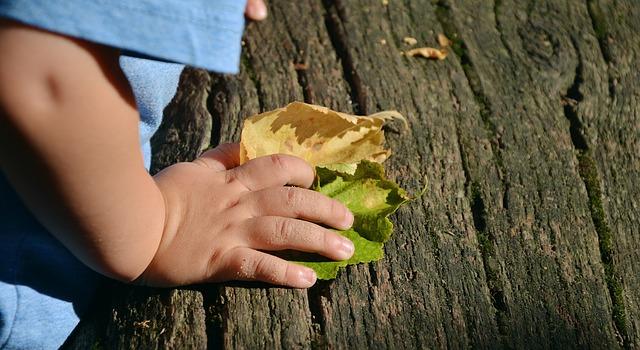Kinderhand am Baum